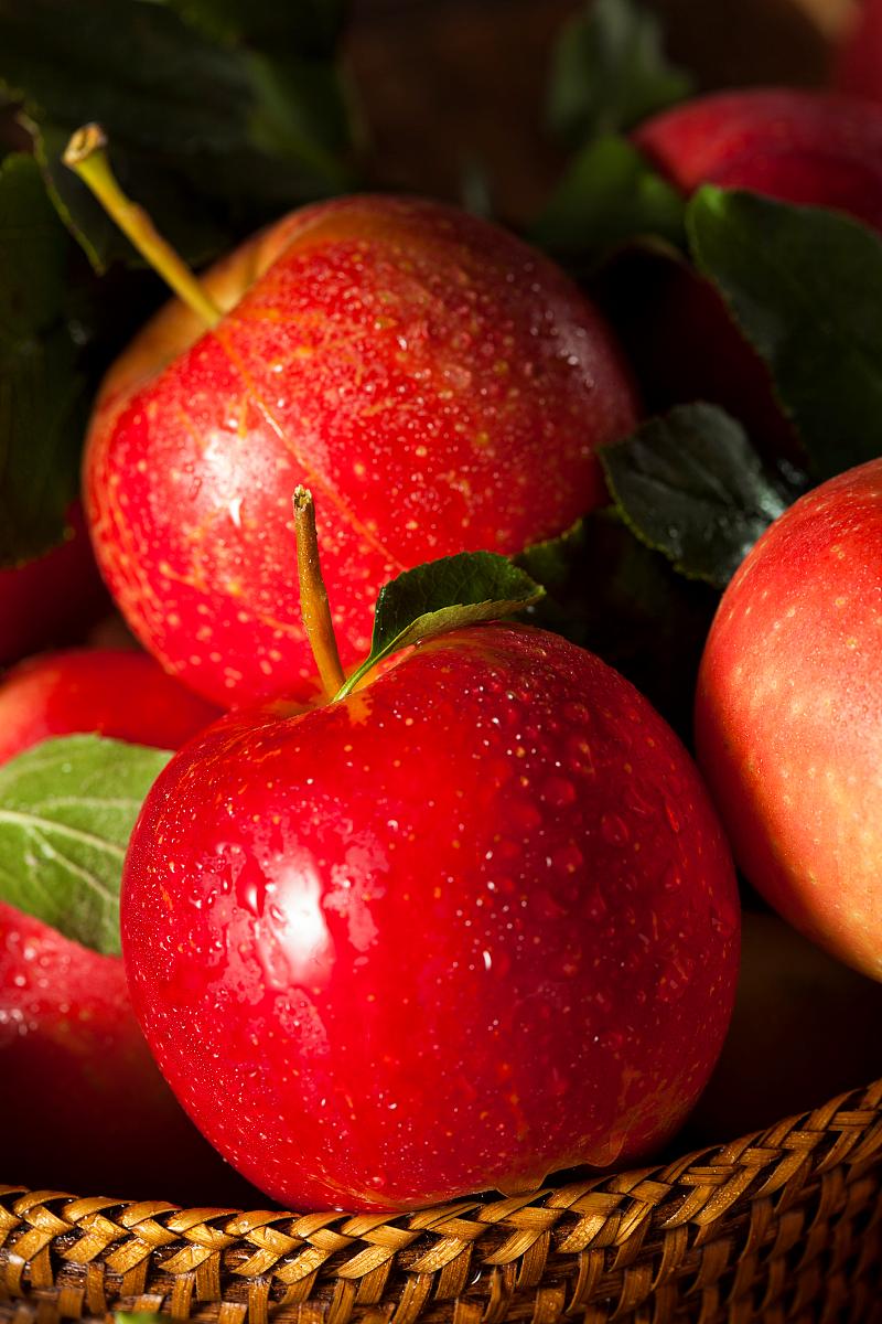 保质期一年苹果上市 苹果怎么保存时间长不会烂?