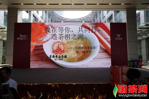 """栉风沐雨60载,茶祖之源""""大白茶闪耀广州茶博会"""