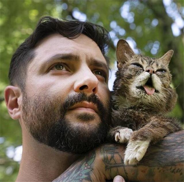 """拥有530万粉丝的猫离去了,它曾经""""拯救""""无数动物,鼓舞人心"""