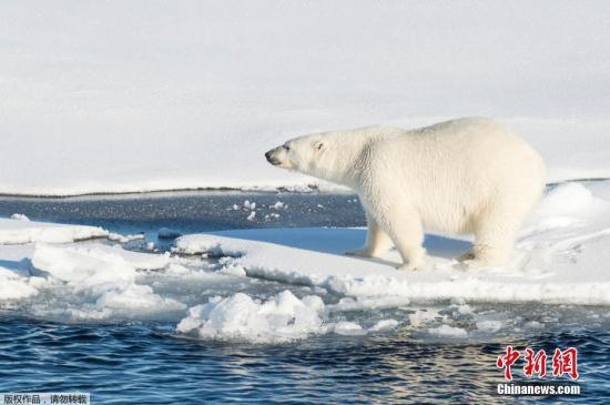 世界氣象組織:2010-2019年是有記錄以來最熱十年