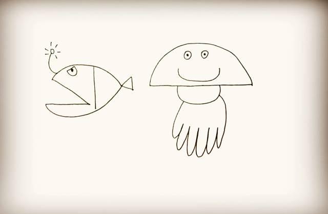 简笔画 海洋生物