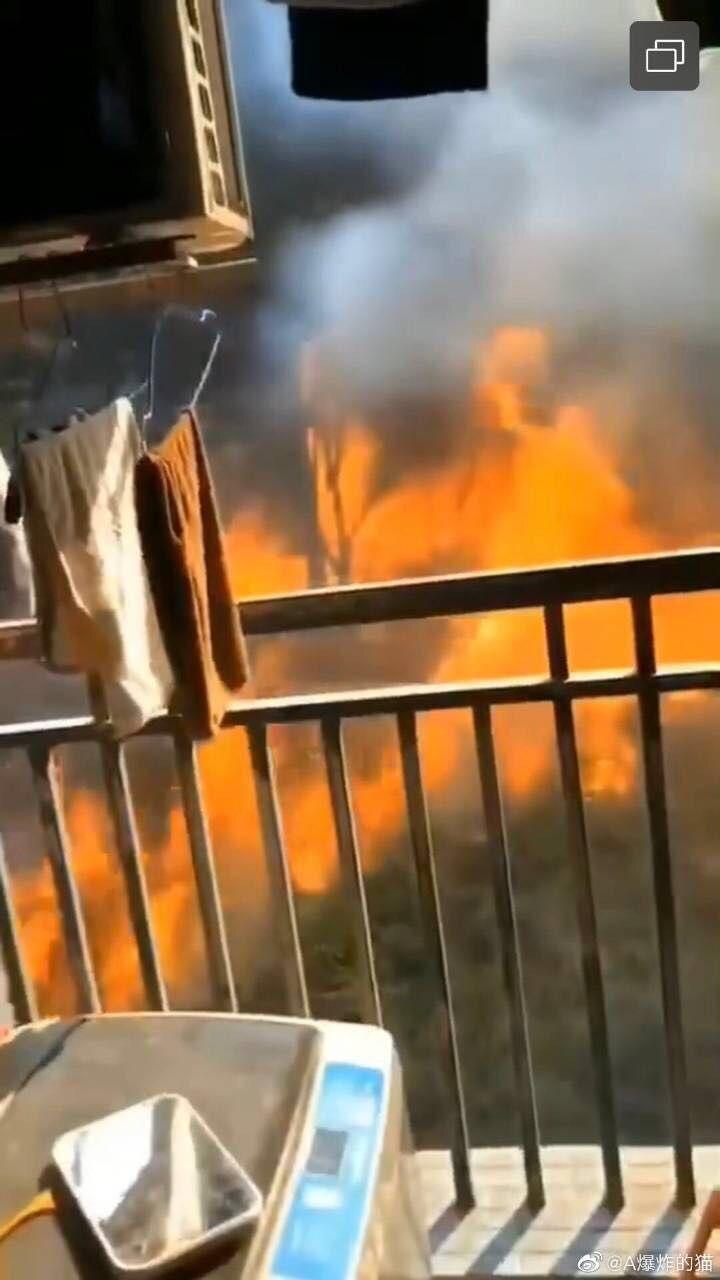 佛山突發山火疏散千余人,應急現場指揮部稱火情總體可控