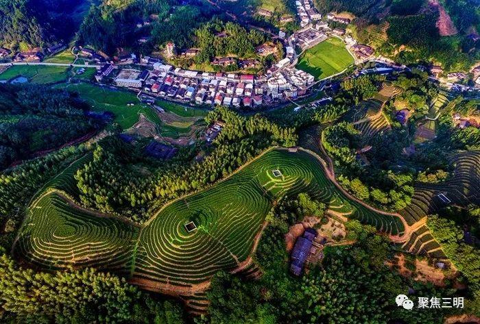 """沙县这5个村将被命名为""""福建省森林村庄""""!快来为你家乡打CALL!"""