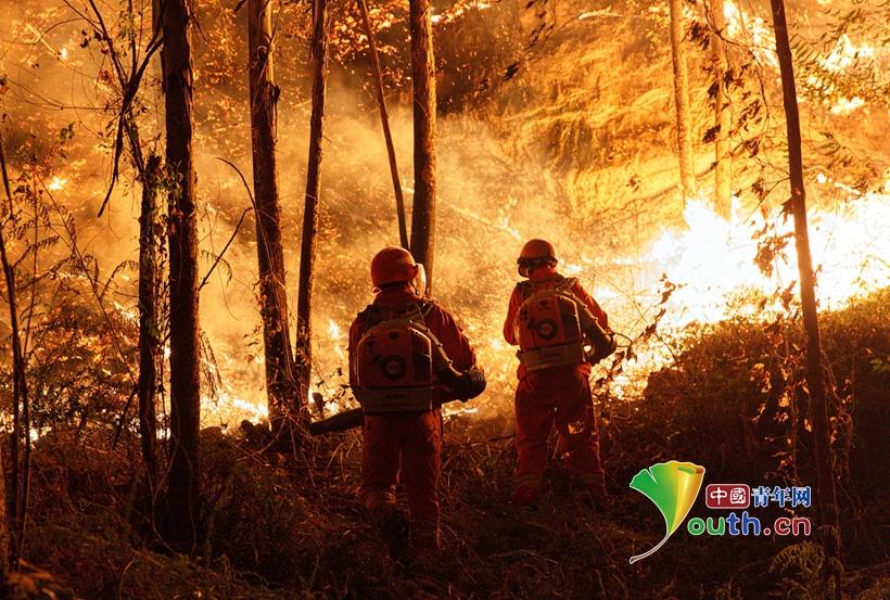 广东佛山森林火灾西线明火扑灭 目前无人员伤亡报告