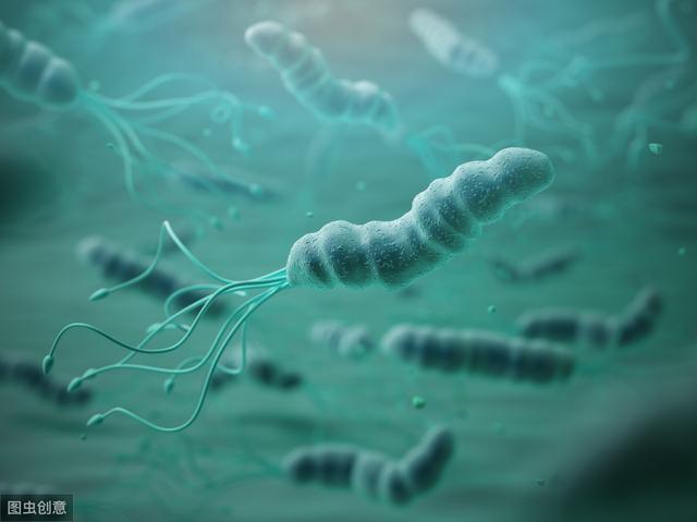 这4个药是幽门螺杆菌的天敌,分别是饭前还是饭后吃?要注意啥?