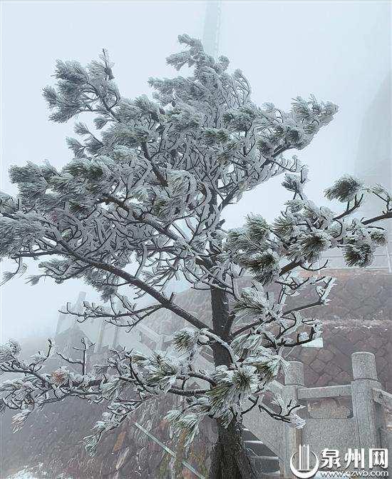 """九仙山上踏雪赏雾凇 周末泉州依旧""""速冻"""""""