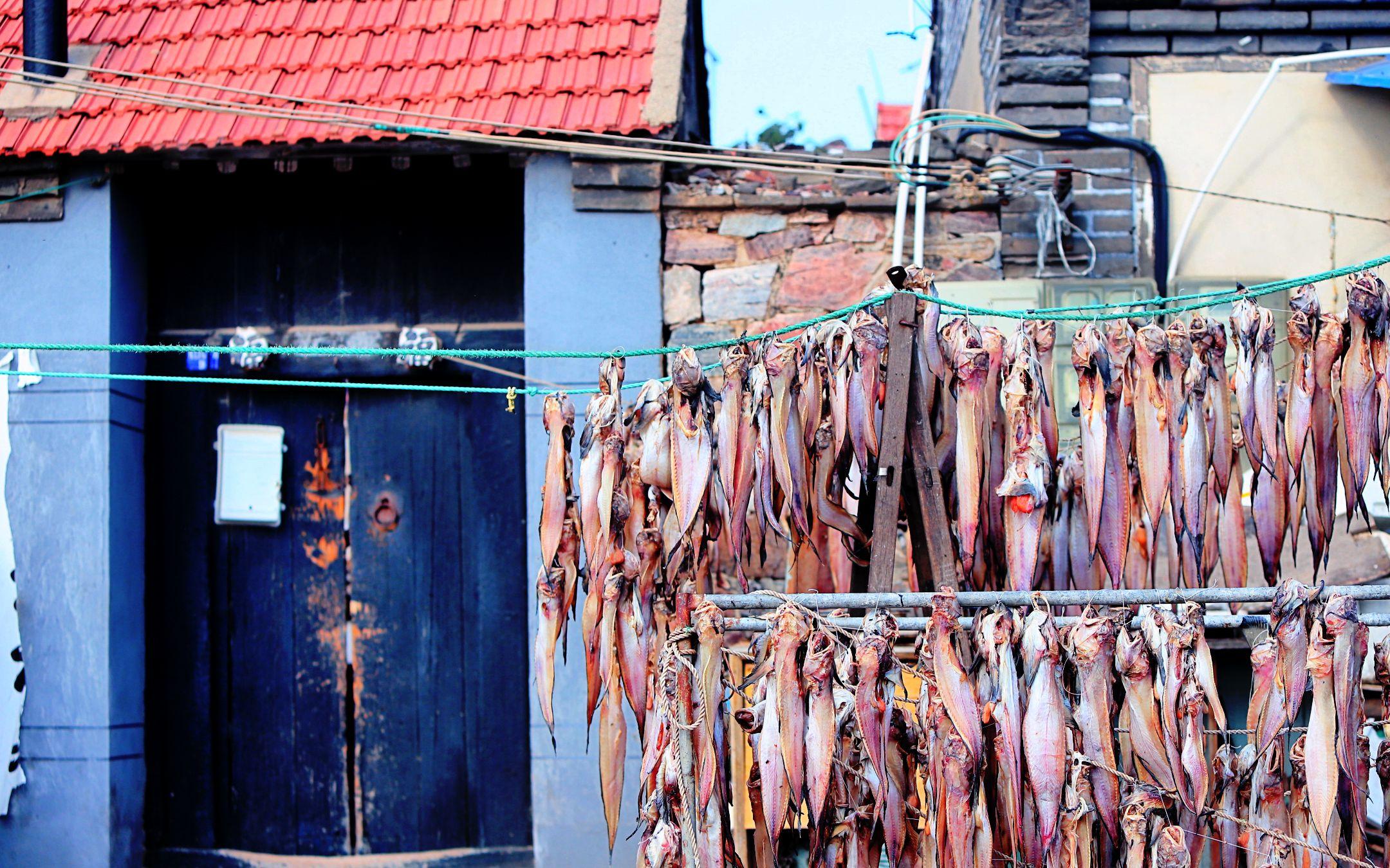大雪前后 魚干飄香的海邊漁村最有家鄉味兒_東口村