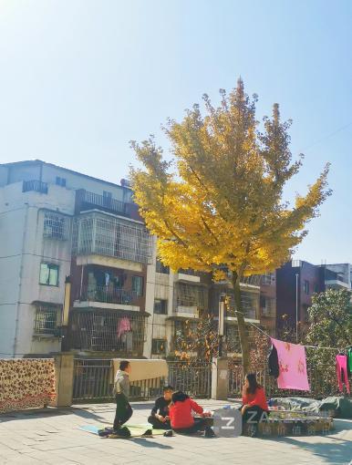 太合心了!贵州本周阳光持续在线,大部最高气温10℃以上