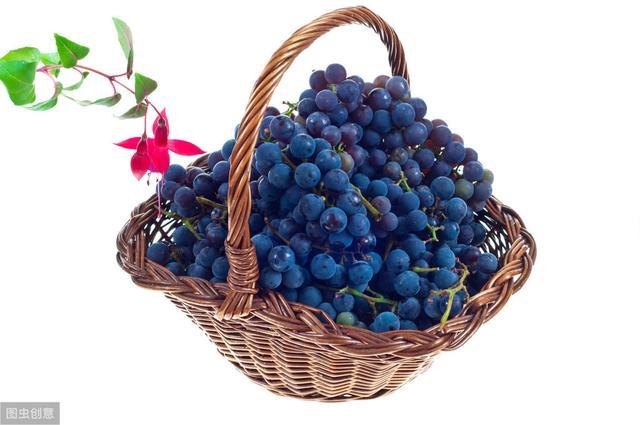 常吃葡萄可养肝,颜色不同,功效不同