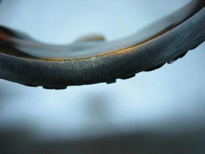 假披毛犀角是什么做的?怎么分辨披毛犀角制品?【披毛犀角真假辨别】 网络快讯 第6张