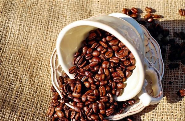 再过30年咖啡将消失?西班牙专家:气候变暖是元凶