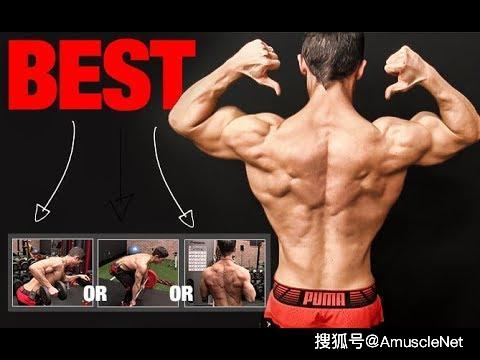 背部动作不标准还想变大,先把这些看完再练
