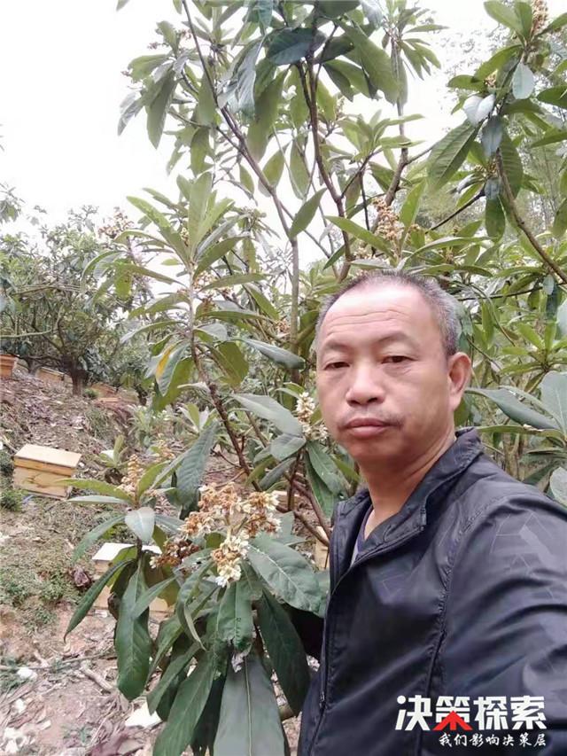 西峡县二郎坪镇:给小蜜蜂一个温暖的家