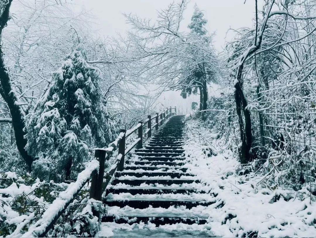 这个冬天不容错过,成都玩雪好去处