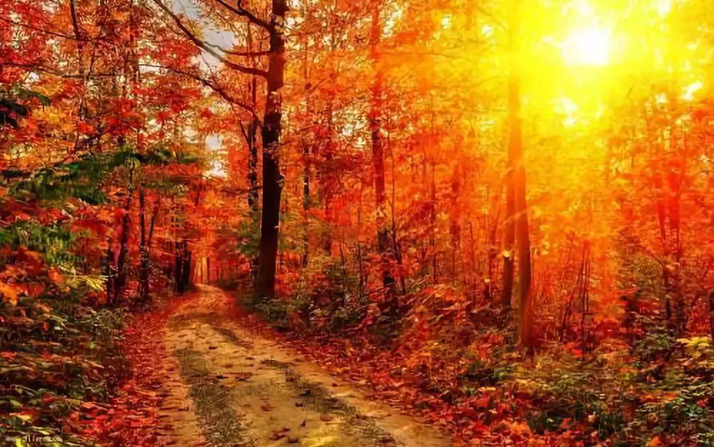 秋冬季节咽干鼻燥,皮肤干涩怎么保养?