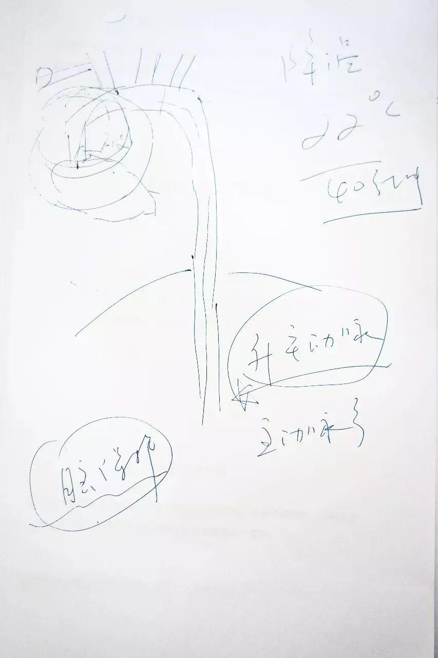 主动脉夹层分型图片