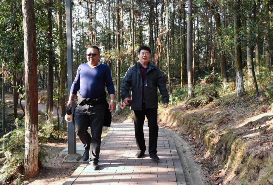 【健康生活·绿色出行】金霞山上奔跑的莲乡检察官