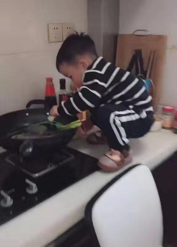 稍不留神,孙子就把奶奶养的鱼下了锅,调料俱全,网友:还等什么,点火吧
