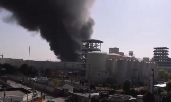 上海一糧油公司發生火災,火勢已得到控制無人傷亡|