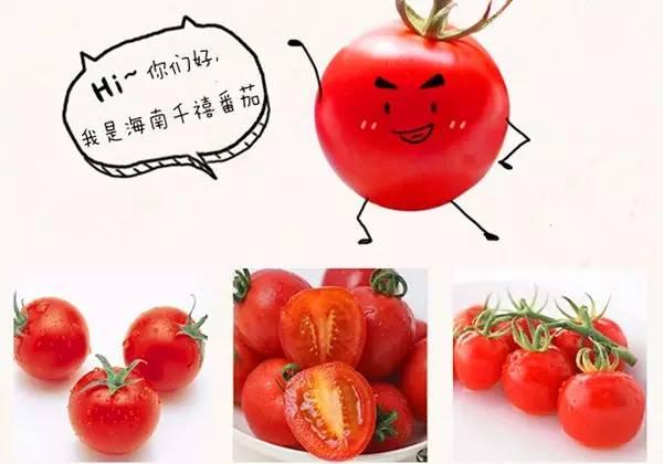 【万德隆】海南陵水千禧圣女果,原产地直采,快来尝鲜吧!