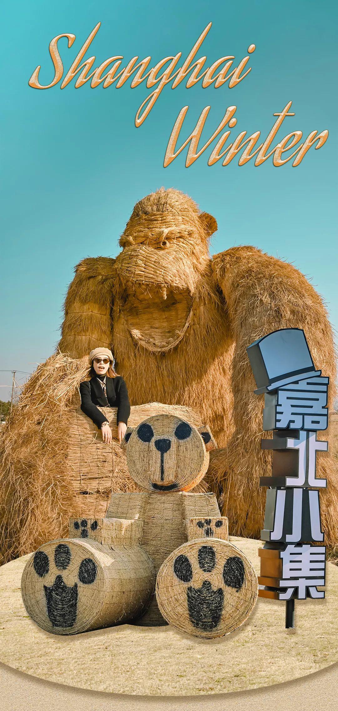 """请注意!上海嘉北郊野公园有""""大猩猩""""出没!_林木和"""