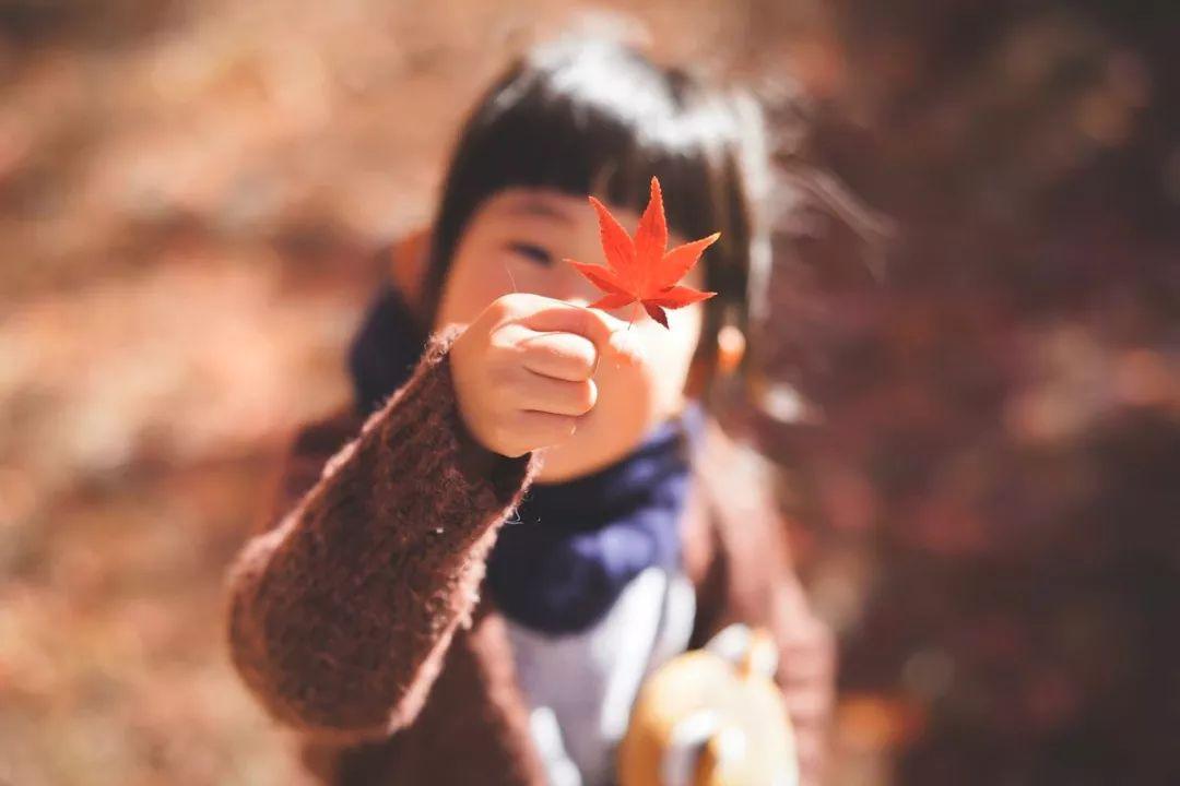 日本一女儿奴爸爸用相机记录家人的幸福时光!网友:又骗我生女儿!