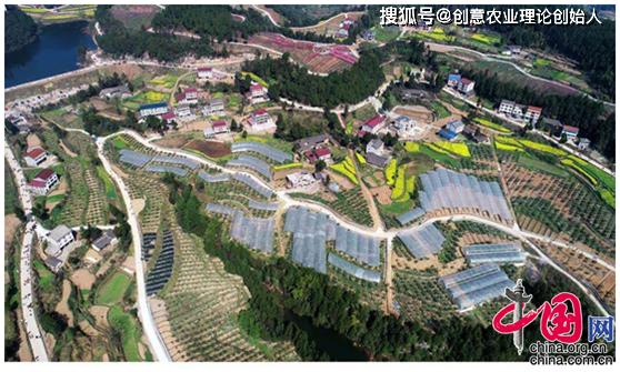 创意农业头条推荐丨中国农村创意榜样罗洪:返乡创业打通扶贫致富路