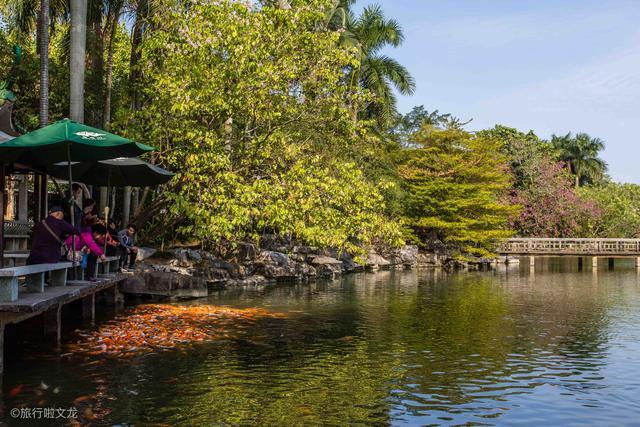 <b>南宁城中的青秀山景区占78公顷,是5A景区,门票却是20元钱</b>