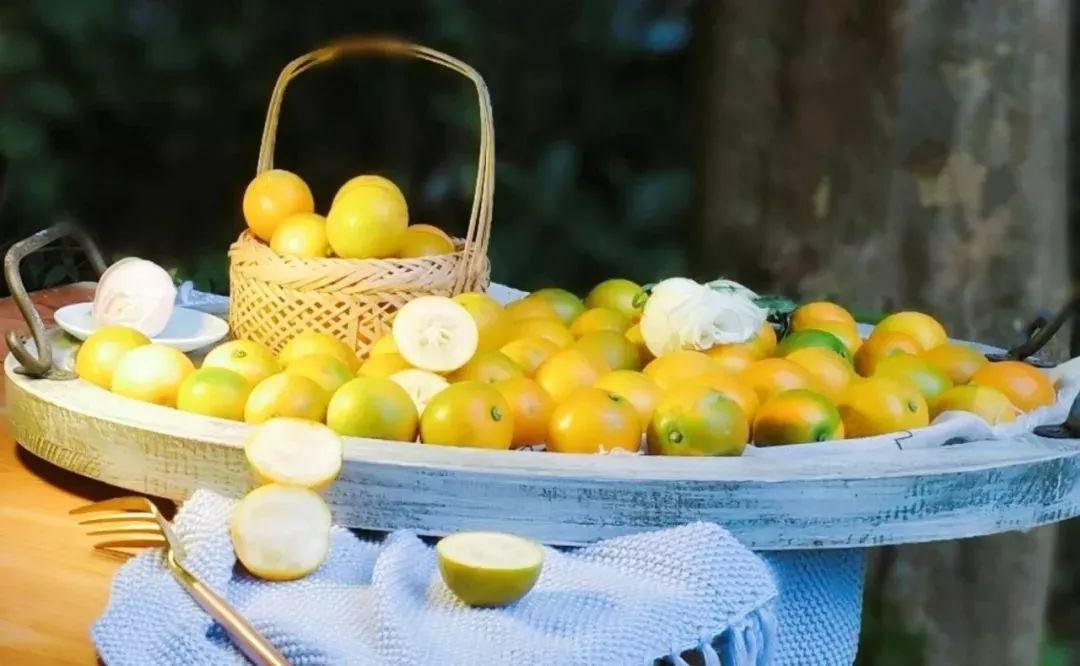 """水果界""""止咳圣果"""",广西地标融安金桔,纯甜不涩口,一吃上瘾!"""