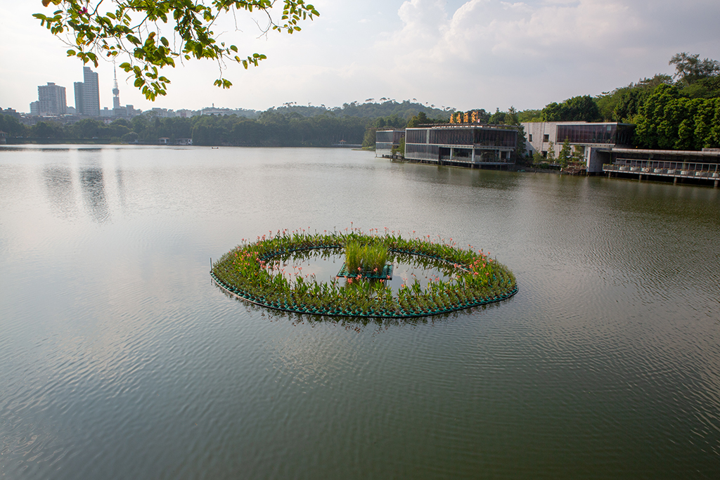 广州四大人工湖之一,低调到被忽略,随手一拍都是大片
