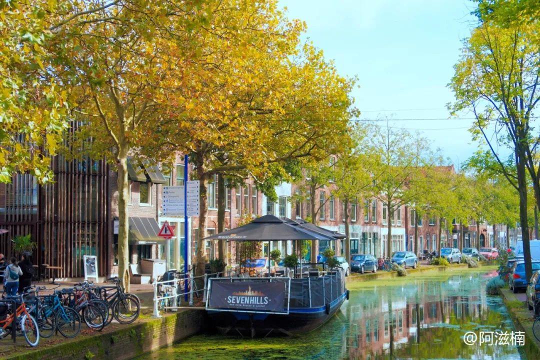 跨年好物 探秘荷兰国宝 皇家代尔夫特蓝瓷 300年传奇历史