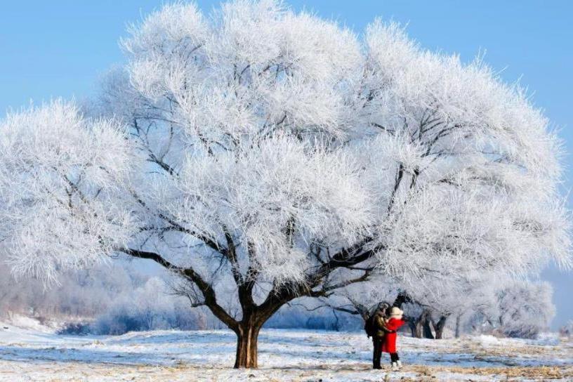 如果一个人去流浪,我建议你趁着冬天去这8个地方