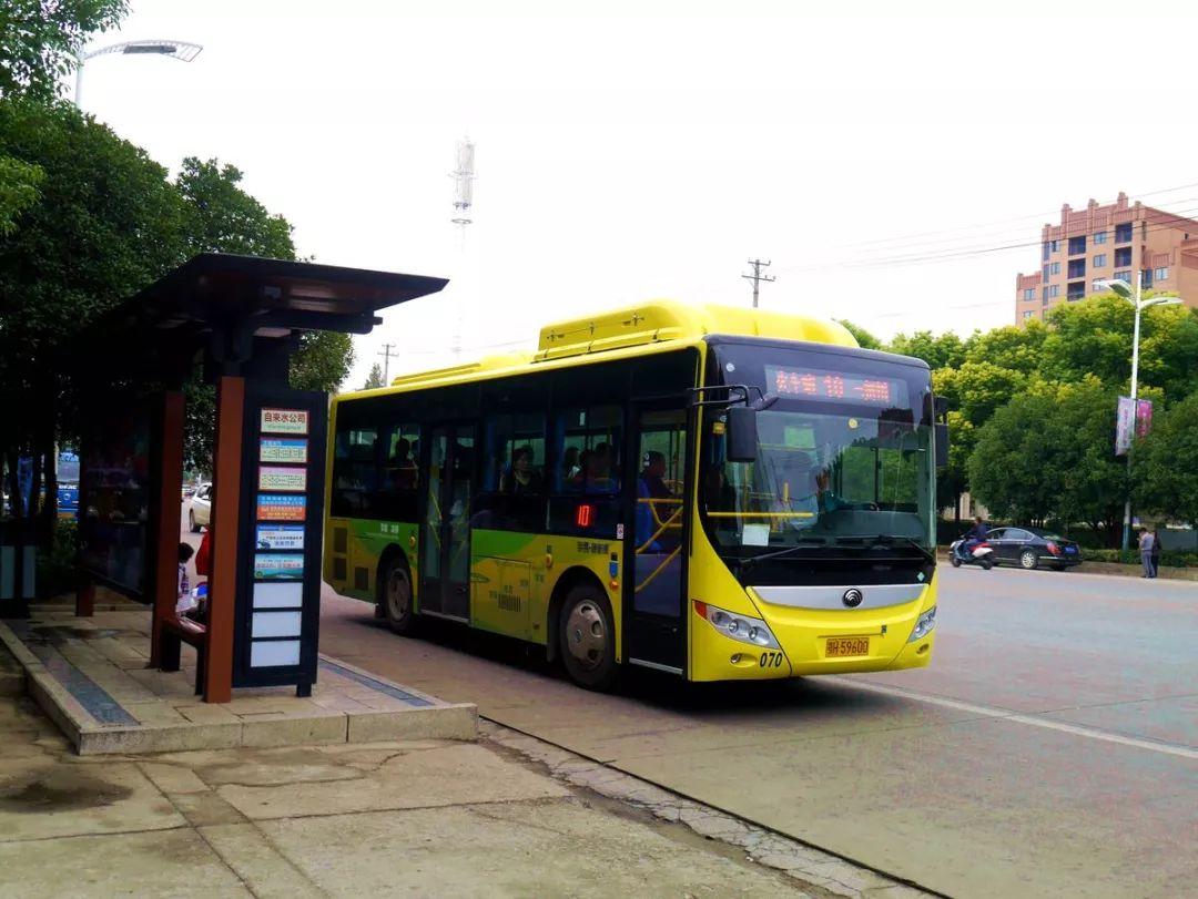 洛阳9路公交车图片