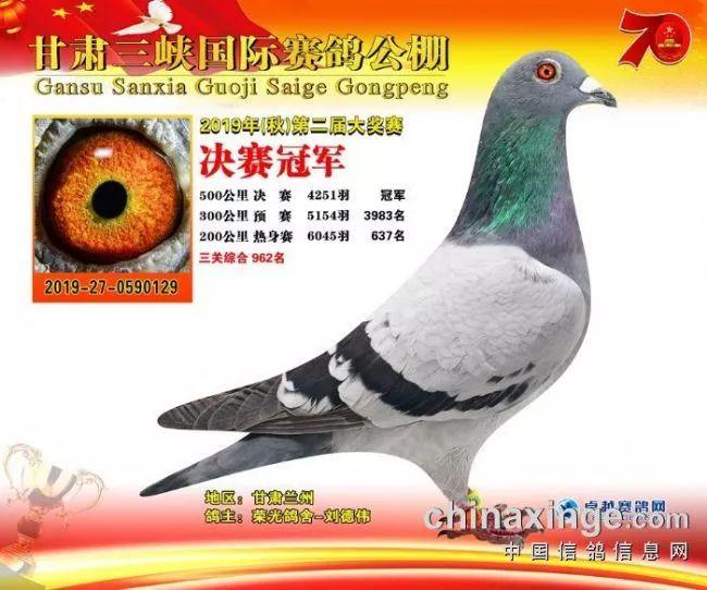 下午直播:甘肃三峡600名精英同步拍卖