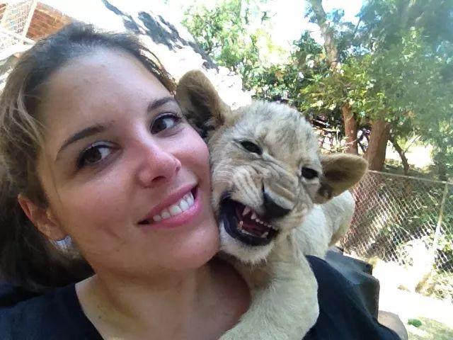 加拿大女孩跑去非洲养狮子,得知真相后却成了她一生的噩梦 |!