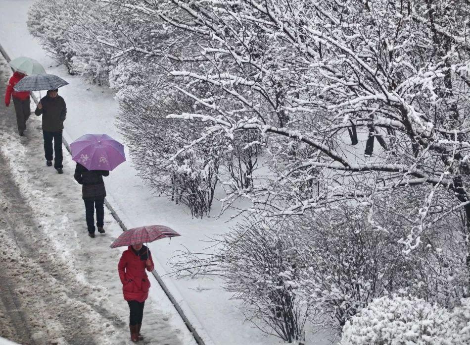 <strong>雨雪,寒潮,大风,降温!大范围</strong>