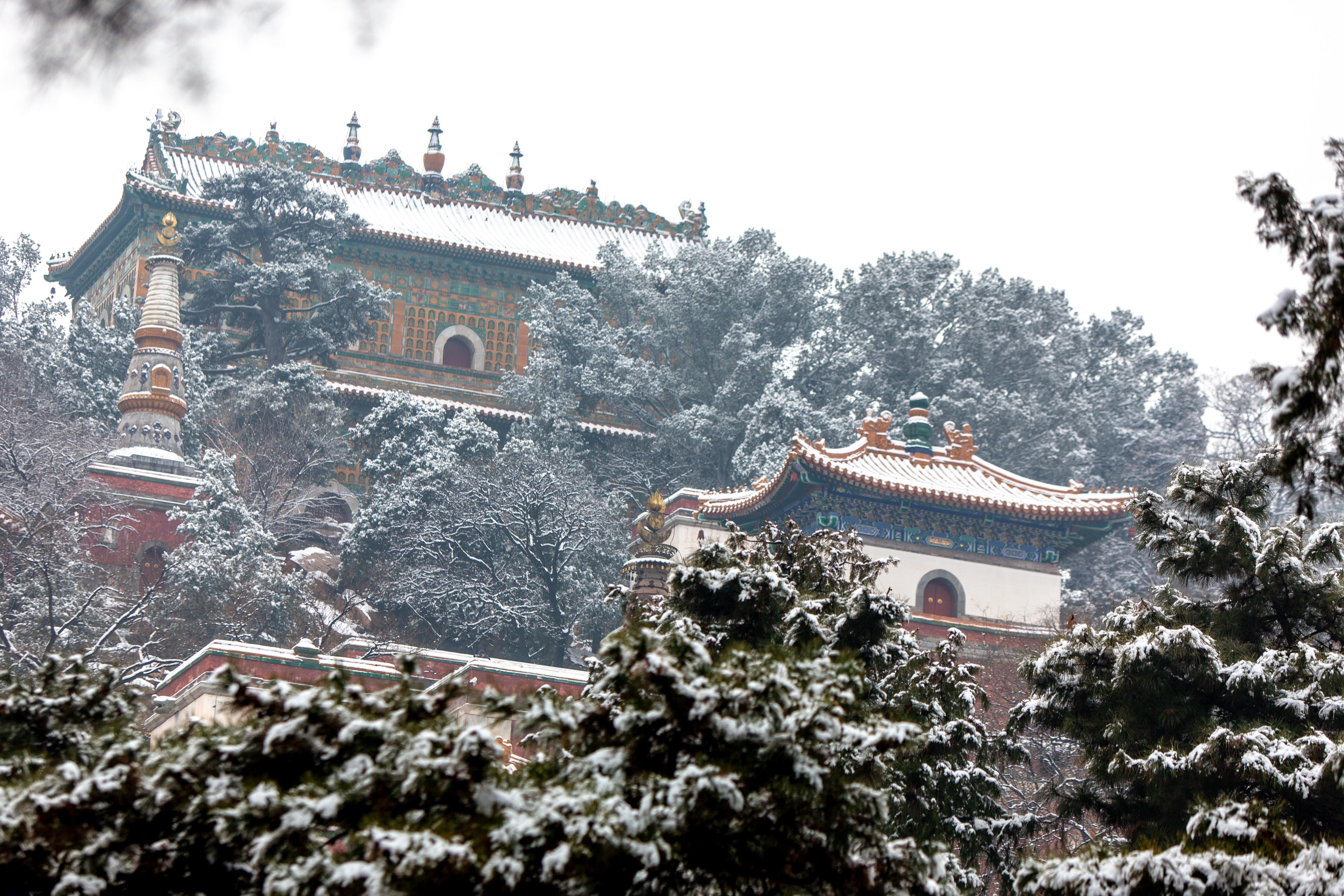 北京第二场大雪,超多美图,带你看颐和园雪景有多美