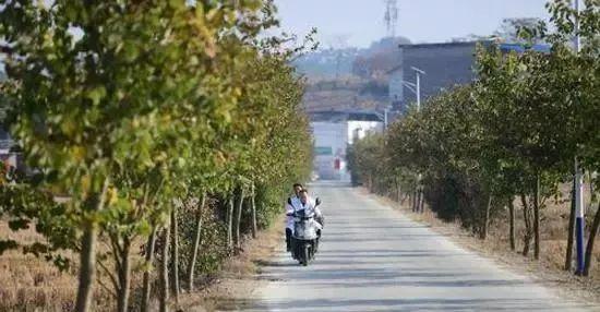 柳州鹿寨四排人口有多少_柳州鹿寨中渡古镇
