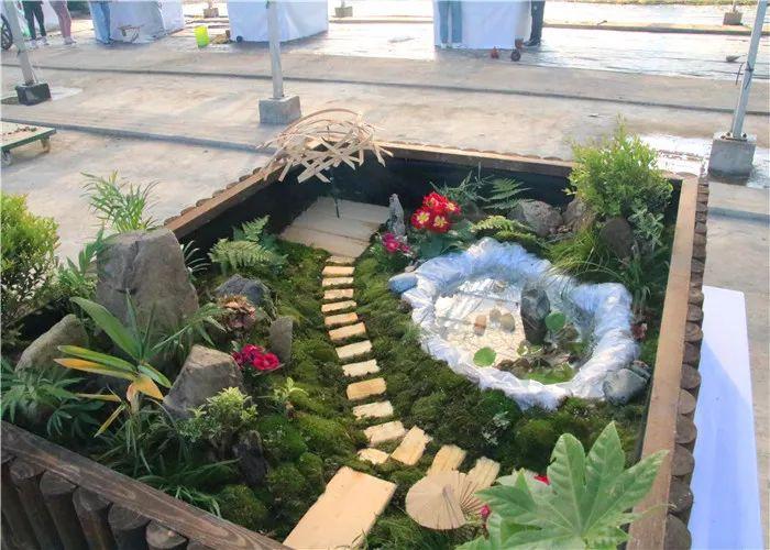 农学院专业技能竞赛节 微景观设计与制作 大赛