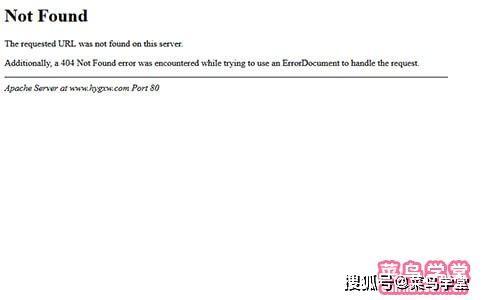 上海网站SEO服务商