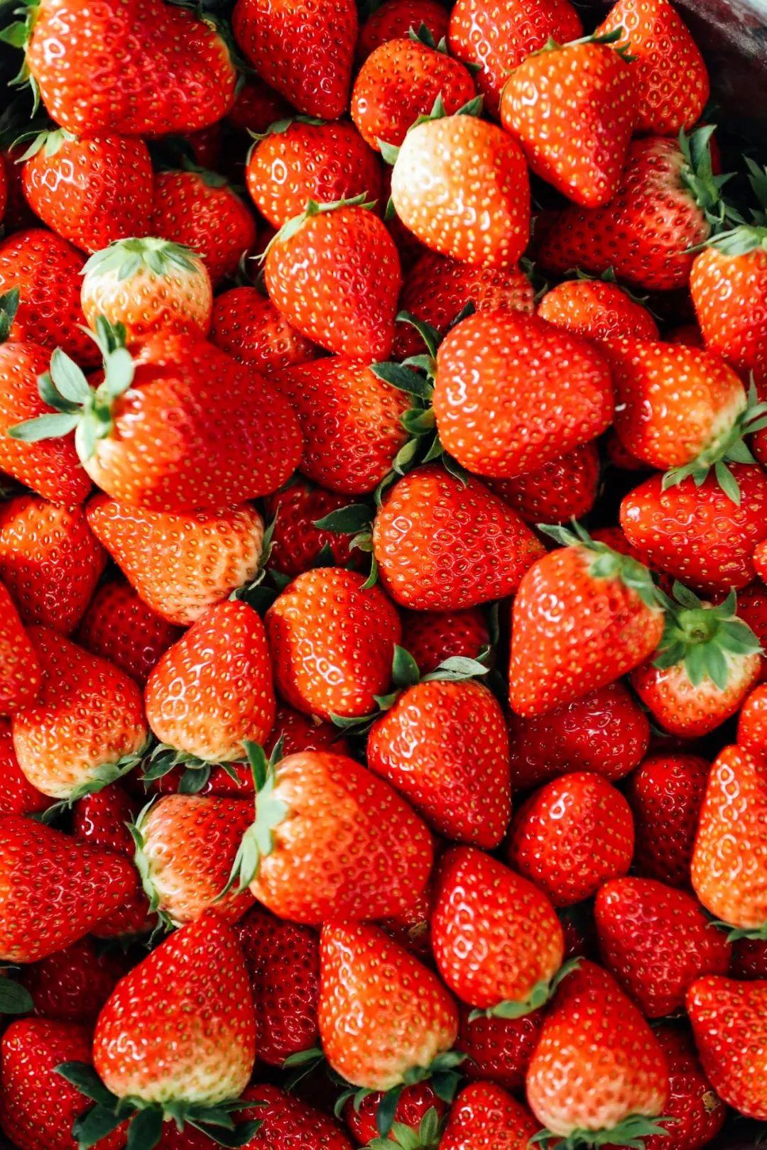 """【邻居团购】有机草莓顺丰直发宝山!当天采摘果味纯正,""""草莓界的奥斯卡"""" 颗颗让你吃出健康美味!"""