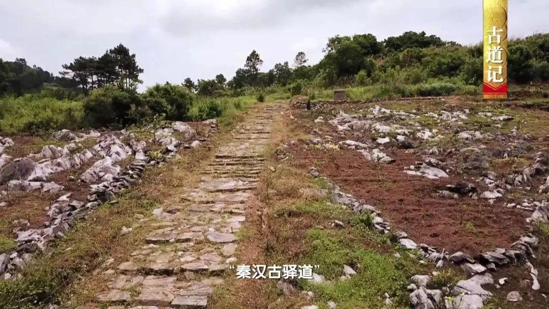 连州大路边人口_连州大东山风景