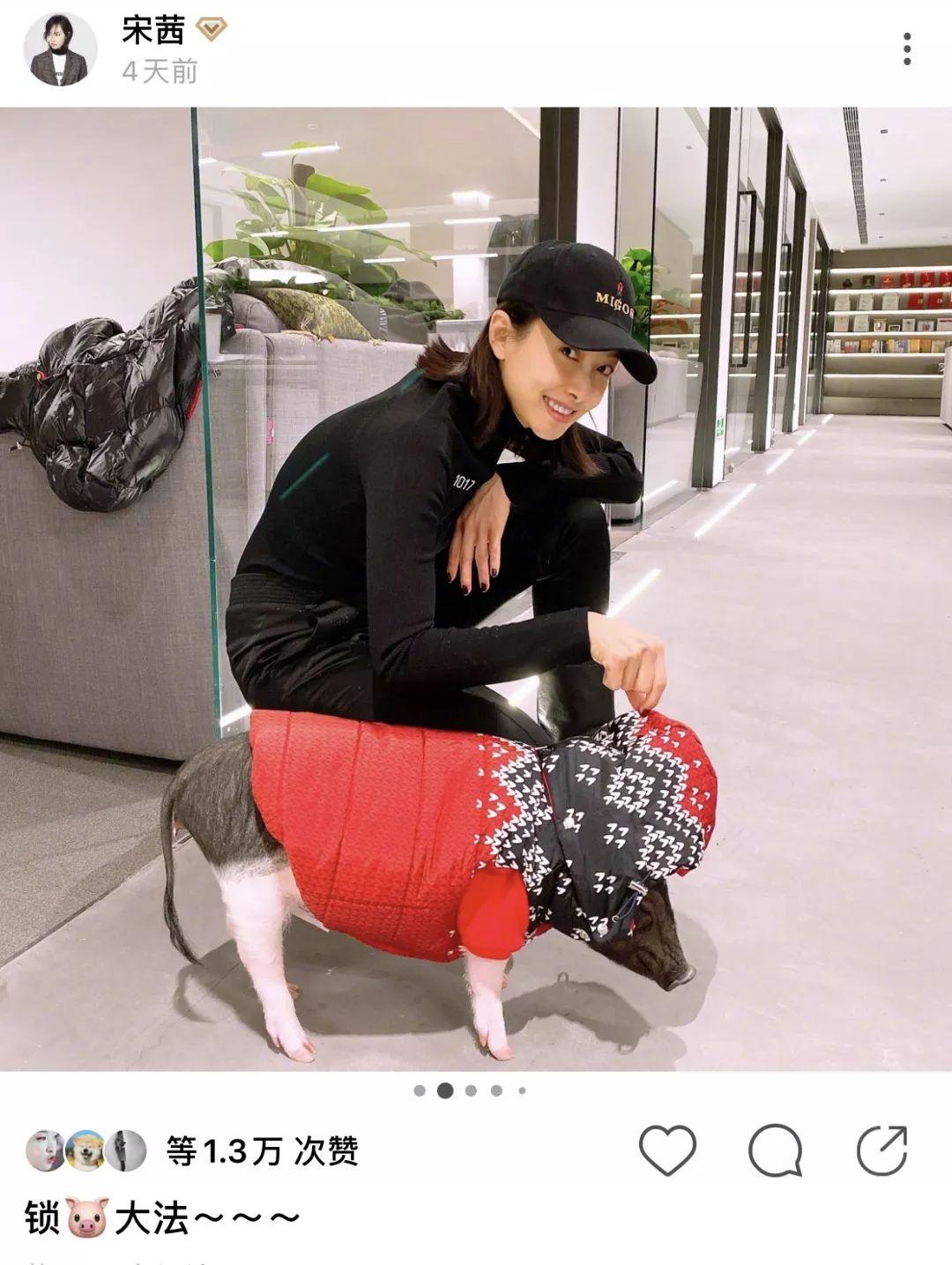 """宋茜的猪都穿4000块的羽绒服?倪妮却裹着""""被子""""出门......"""