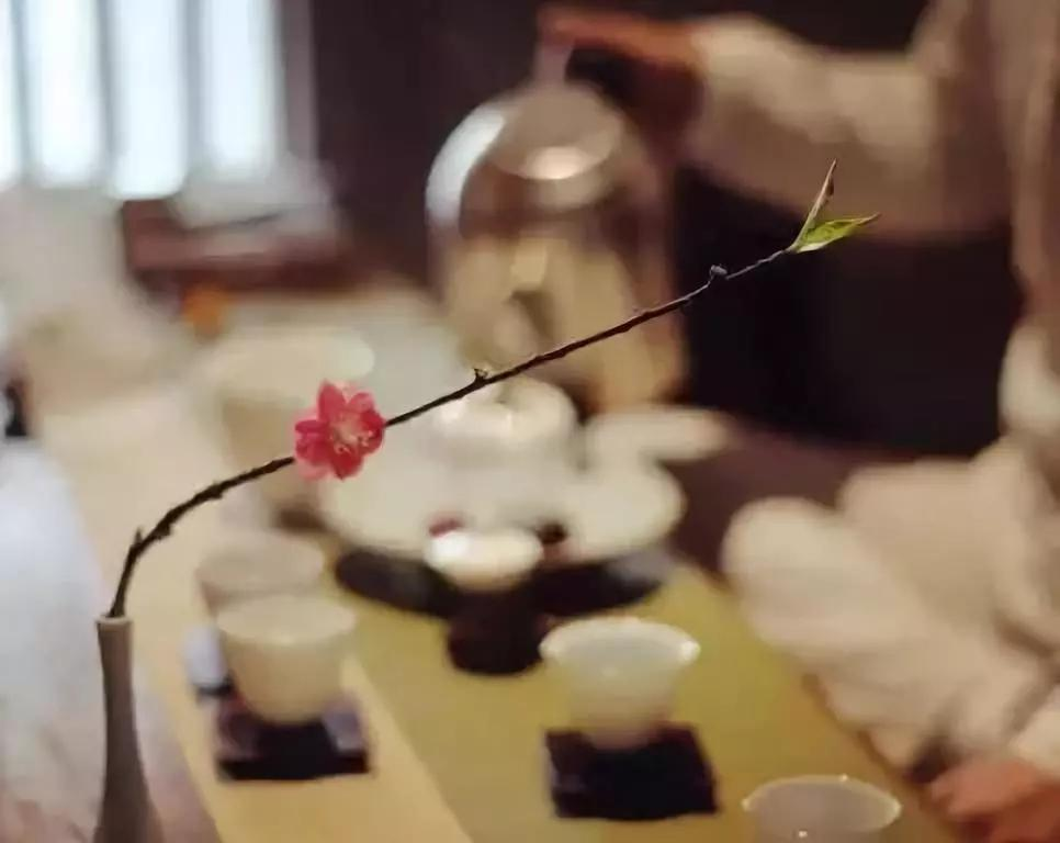 茶·语|我只想,静静地为你泡一壶茶