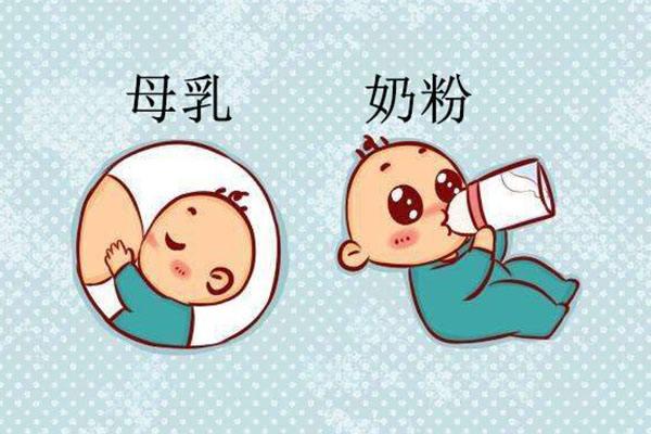 母乳喂养和奶粉喂养哪个更好呢?没有对比就没有伤害!