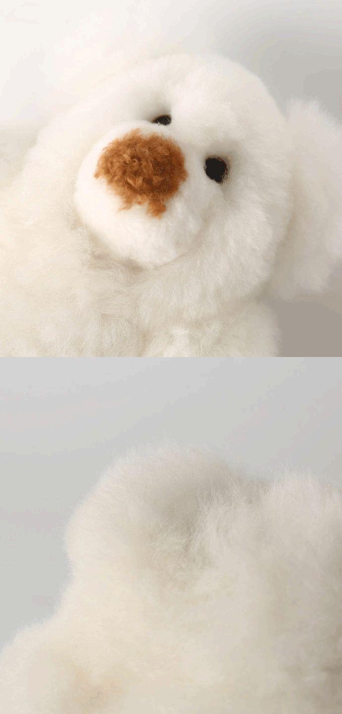 中年胖熊图片_Eden颜_新浪博客