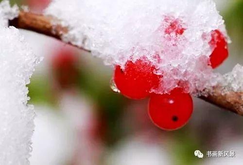 冬至,不仅仅是一个自然节气