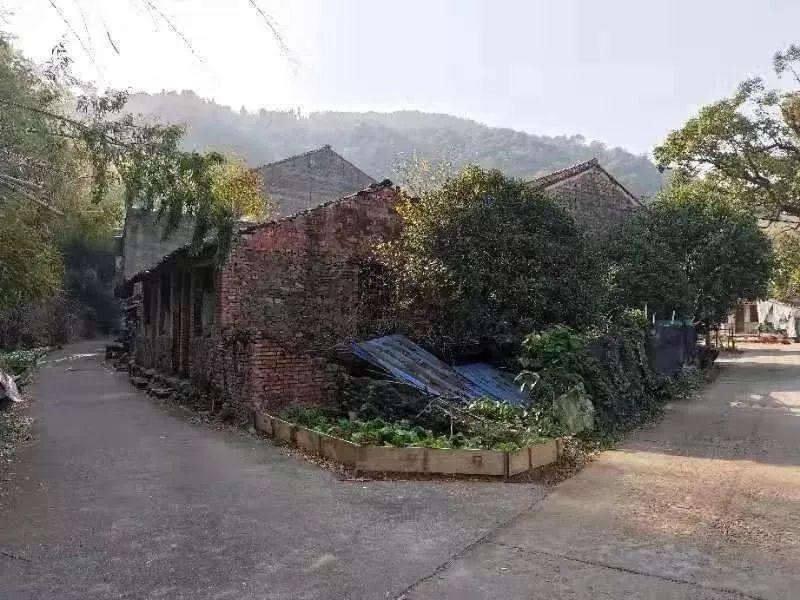整村异地迁建!新屋这样造,台州这两村的年轻人以后媳妇儿讨迷道咯!
