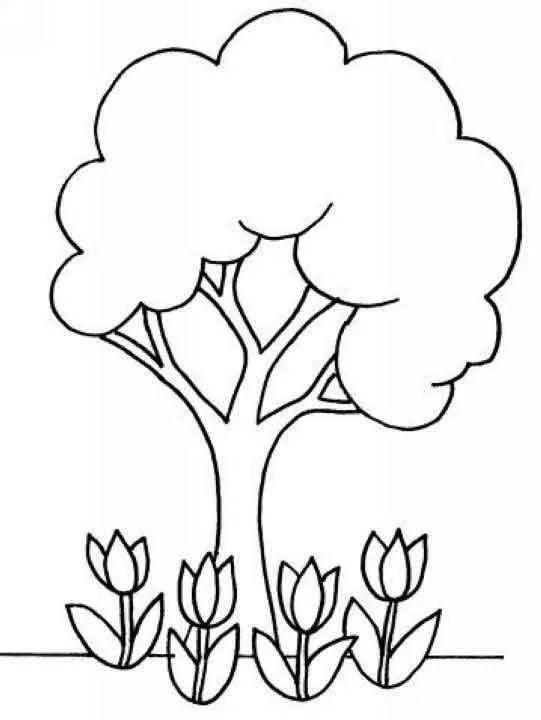 大树的画法简笔画图片 幼儿简笔画,大树简笔画画法 大树简笔画 百人简