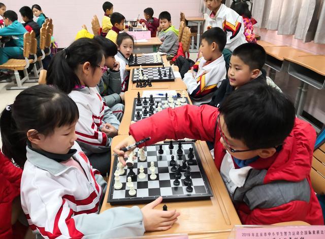 2019北京市中小学生智力运动会举行 67所中小学624名学生参赛